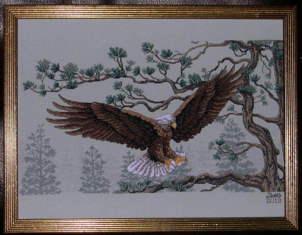 Majestic Eagle finally finished  into 12 X 16 ready made frame